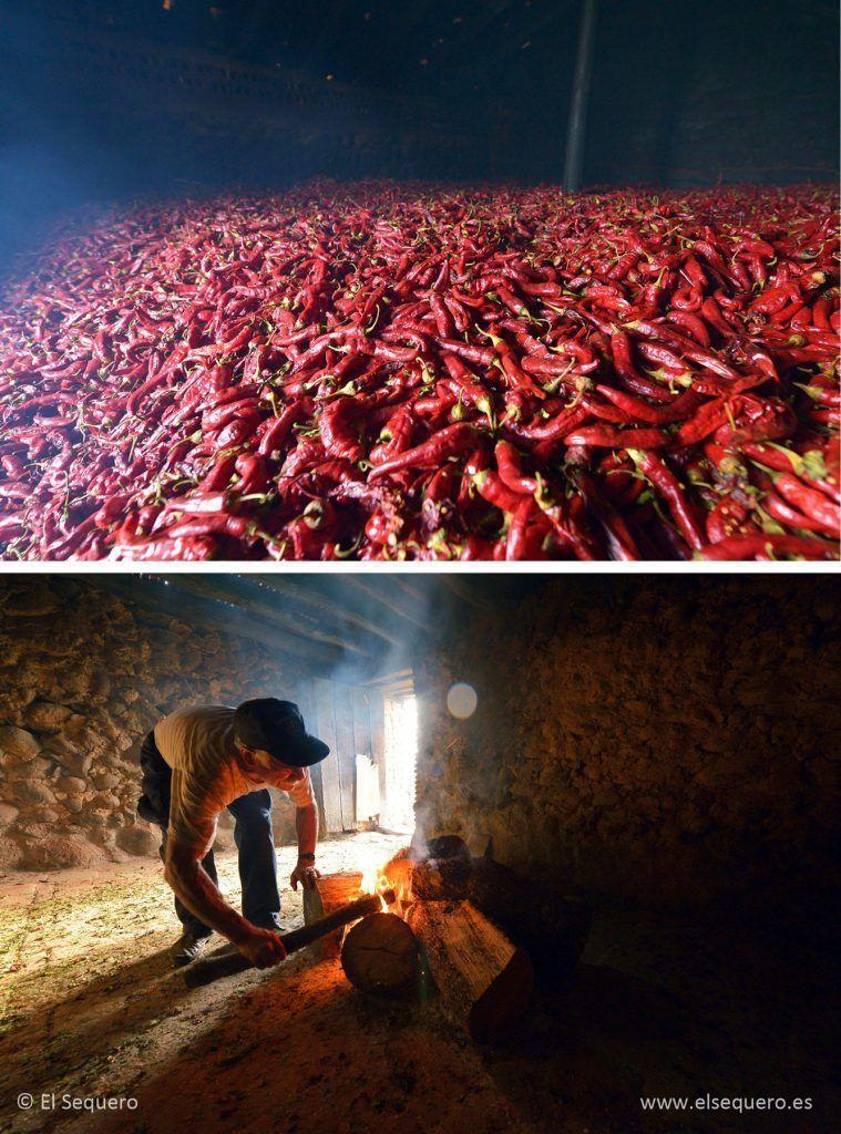 pimenton-gourmet-ahumado-sequero-secado-encina
